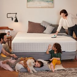 Dla odpoczynku i dobrego snu alergika – jak skutecznie czyścić meble tapicerowane i materac łóżka